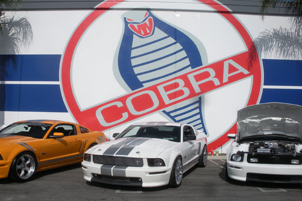 Cars with Cobra sign